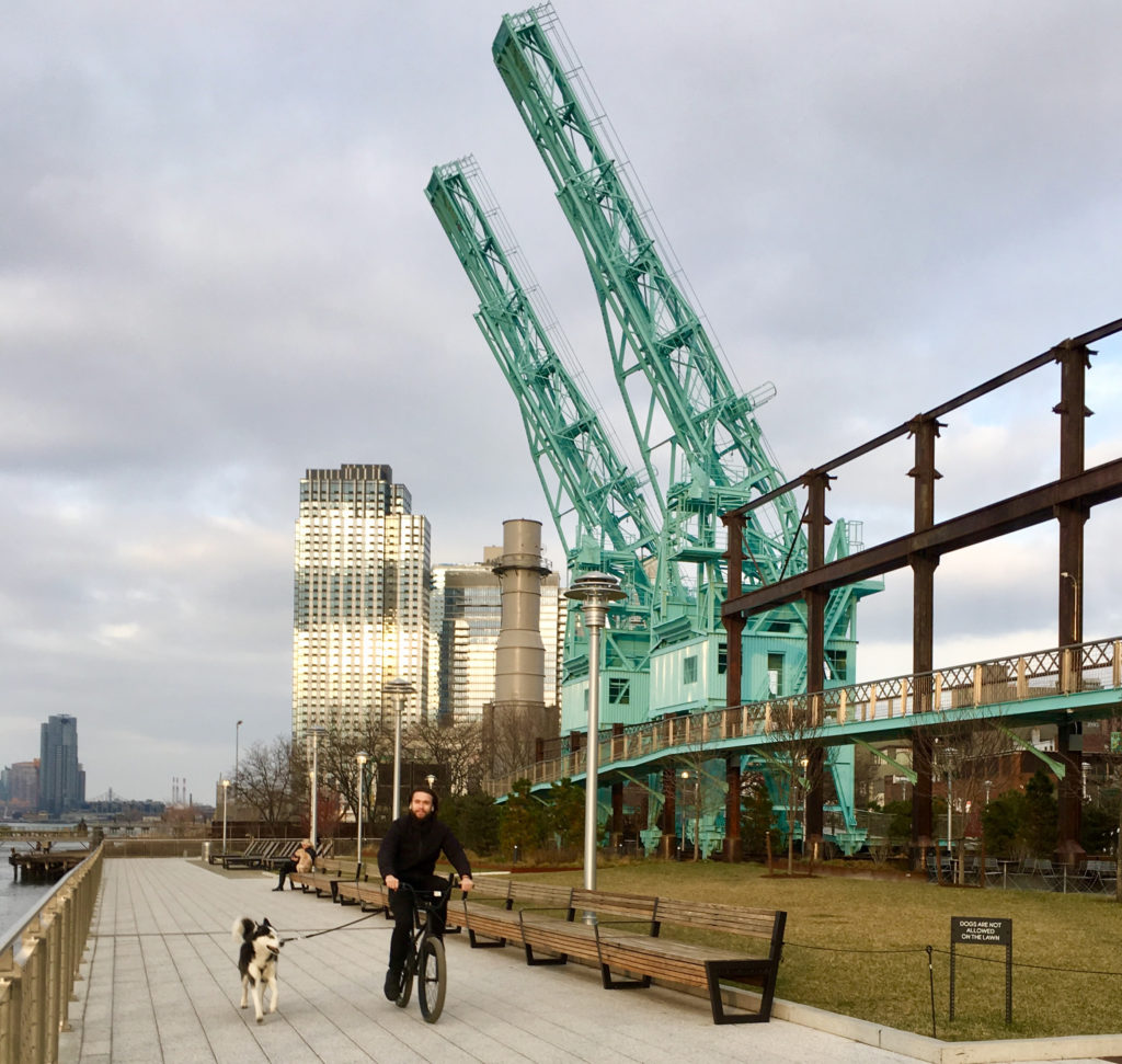Gantry cranes reach for the sky in Williamsburg's Domino Park. Eagle photos by Lore Croghan