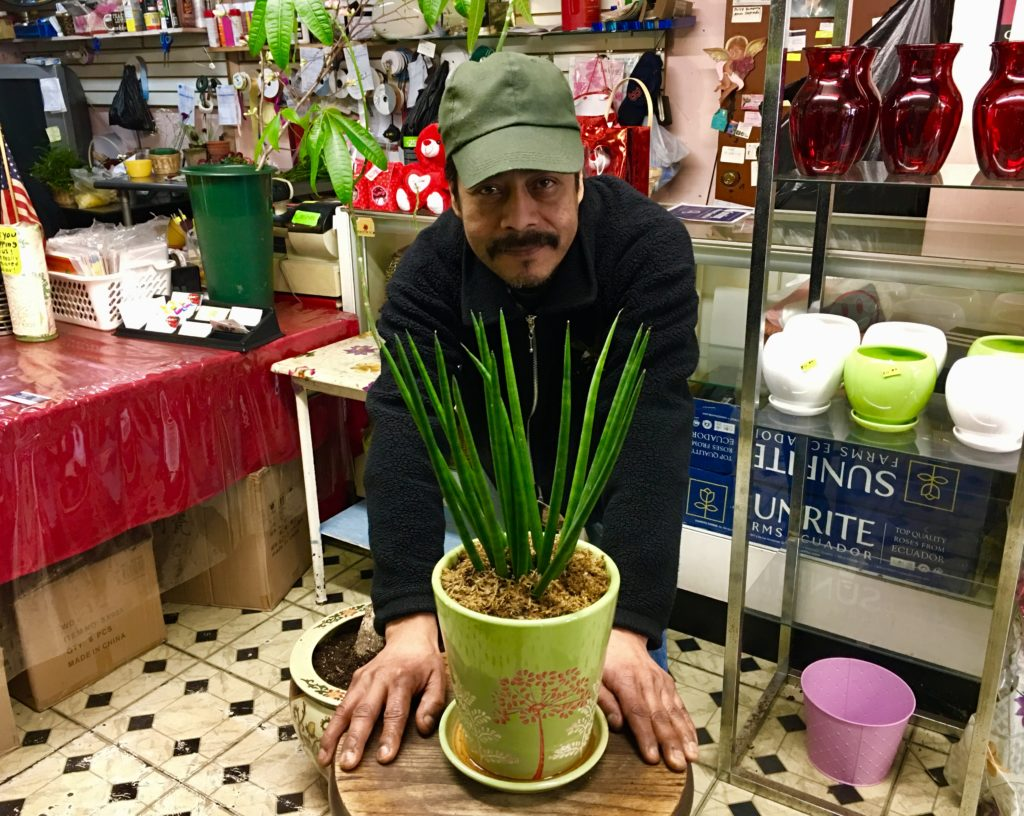 Julio Perez shows off the dragon fingers that Bella Rosa Flower Shop is selling. Eagle photo by Lore Croghan.