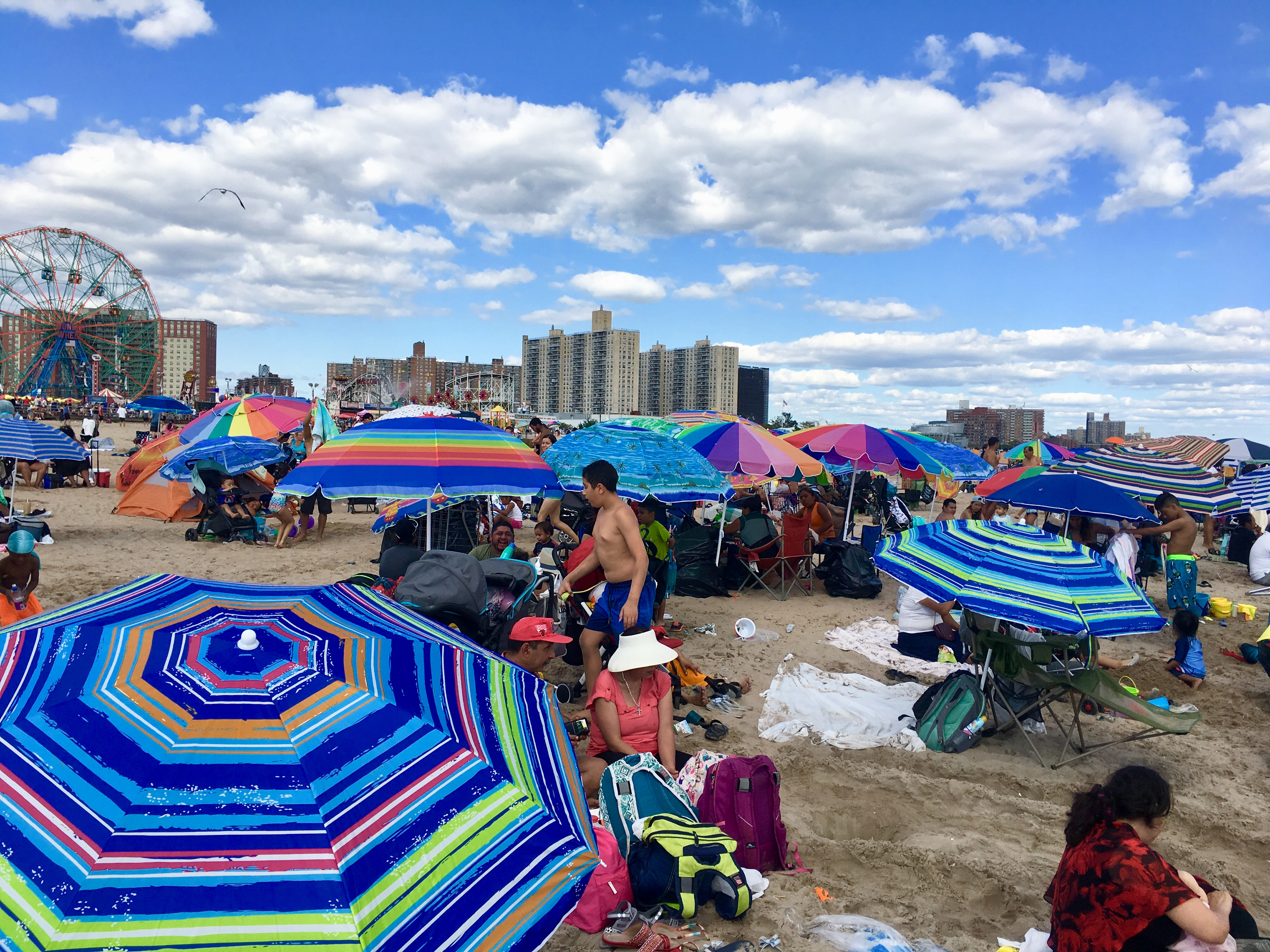 Umbrellas as far as the eye can see on Coney Island Beach. Eagle photo by Lore Croghan