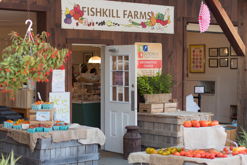 6 places to go apple picking near NYC (without a car)