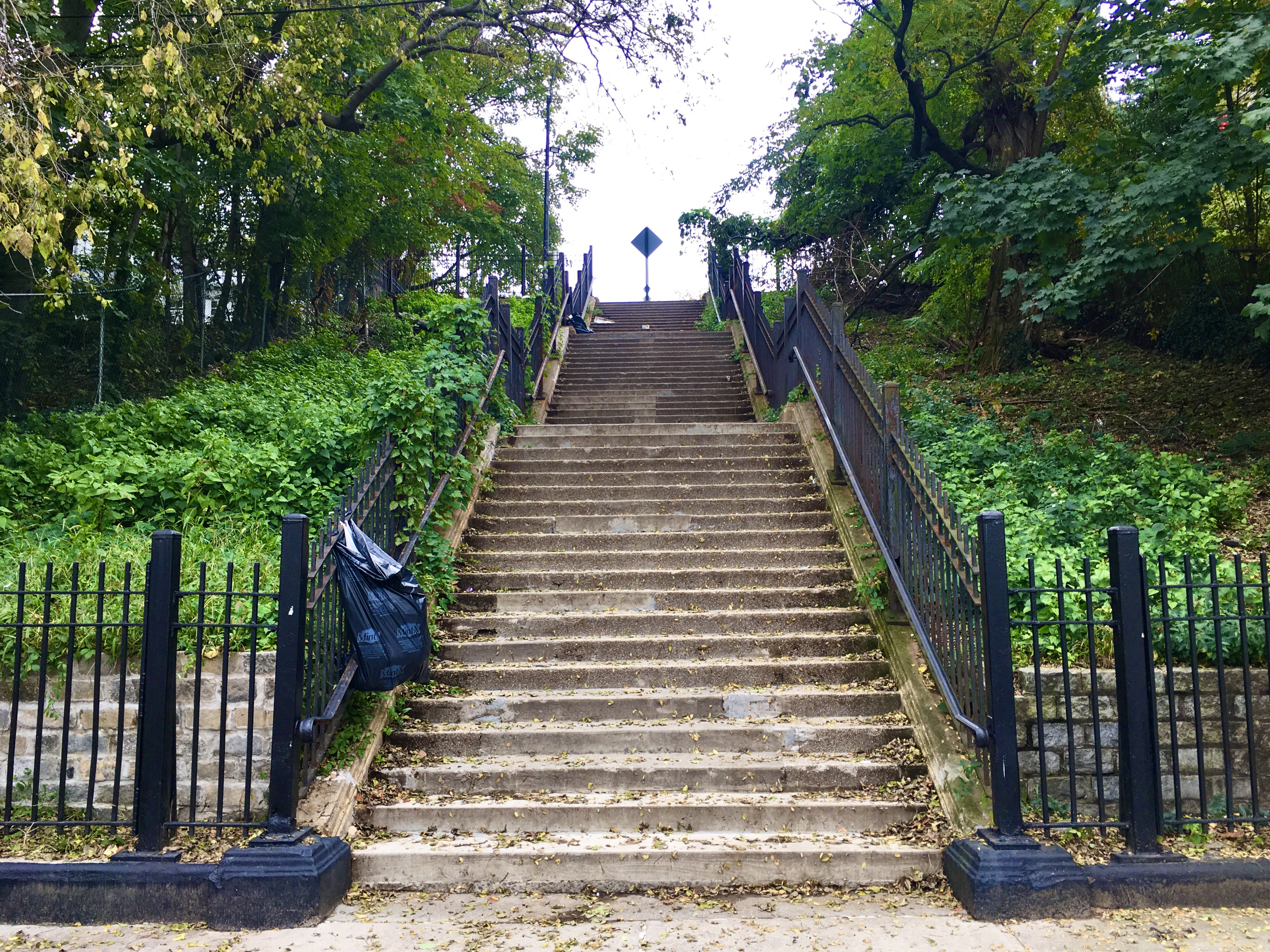 Here's one of Bay Ridge's step streets, where you can dance like the Joker without sharing the stairs with a crowd. Eagle photo by Lore Croghan
