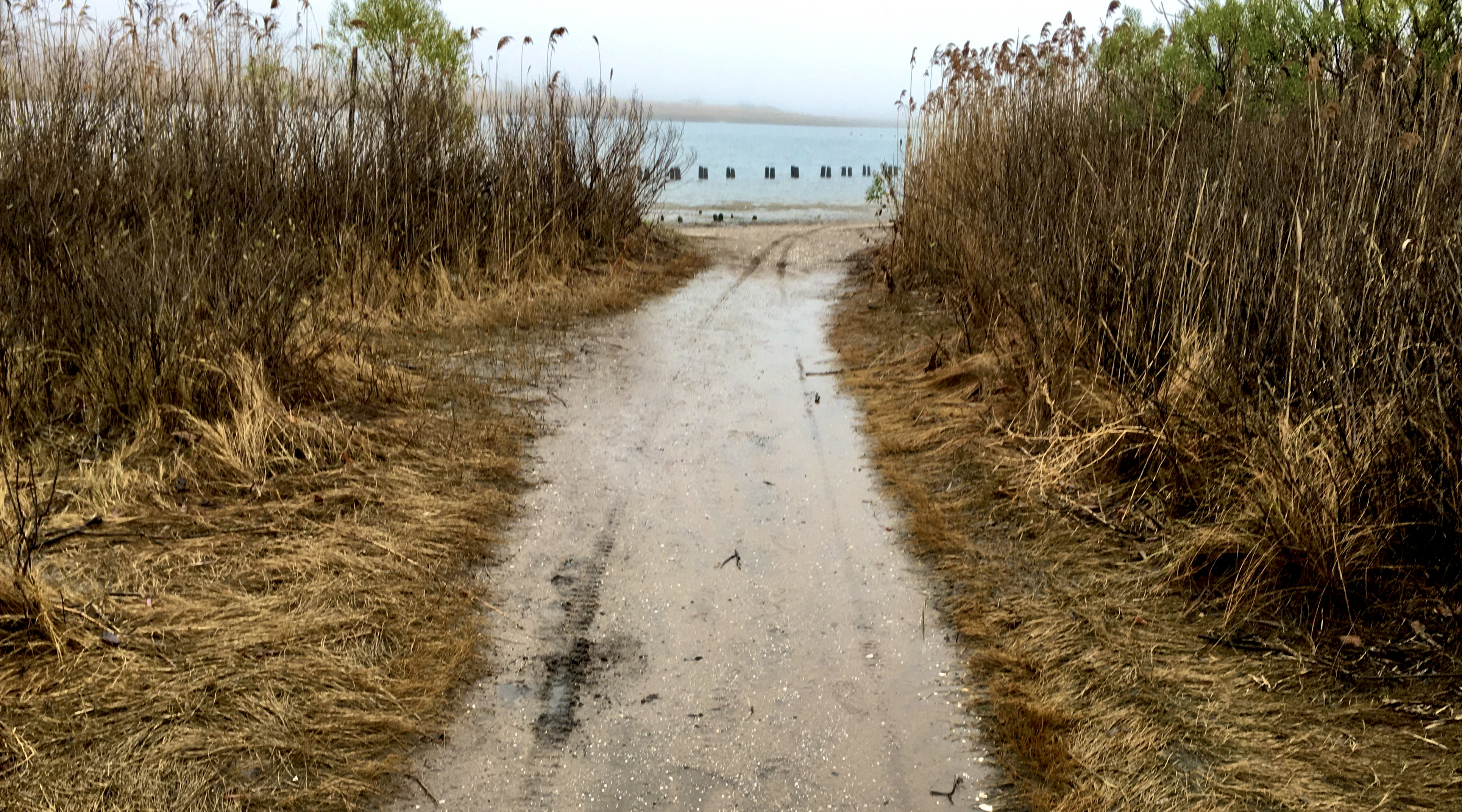 This sandy trail in the Marine Park Preserve takes you to Gerritsen Creek's shoreline. Photo: Lore Croghan/Brooklyn Eagle