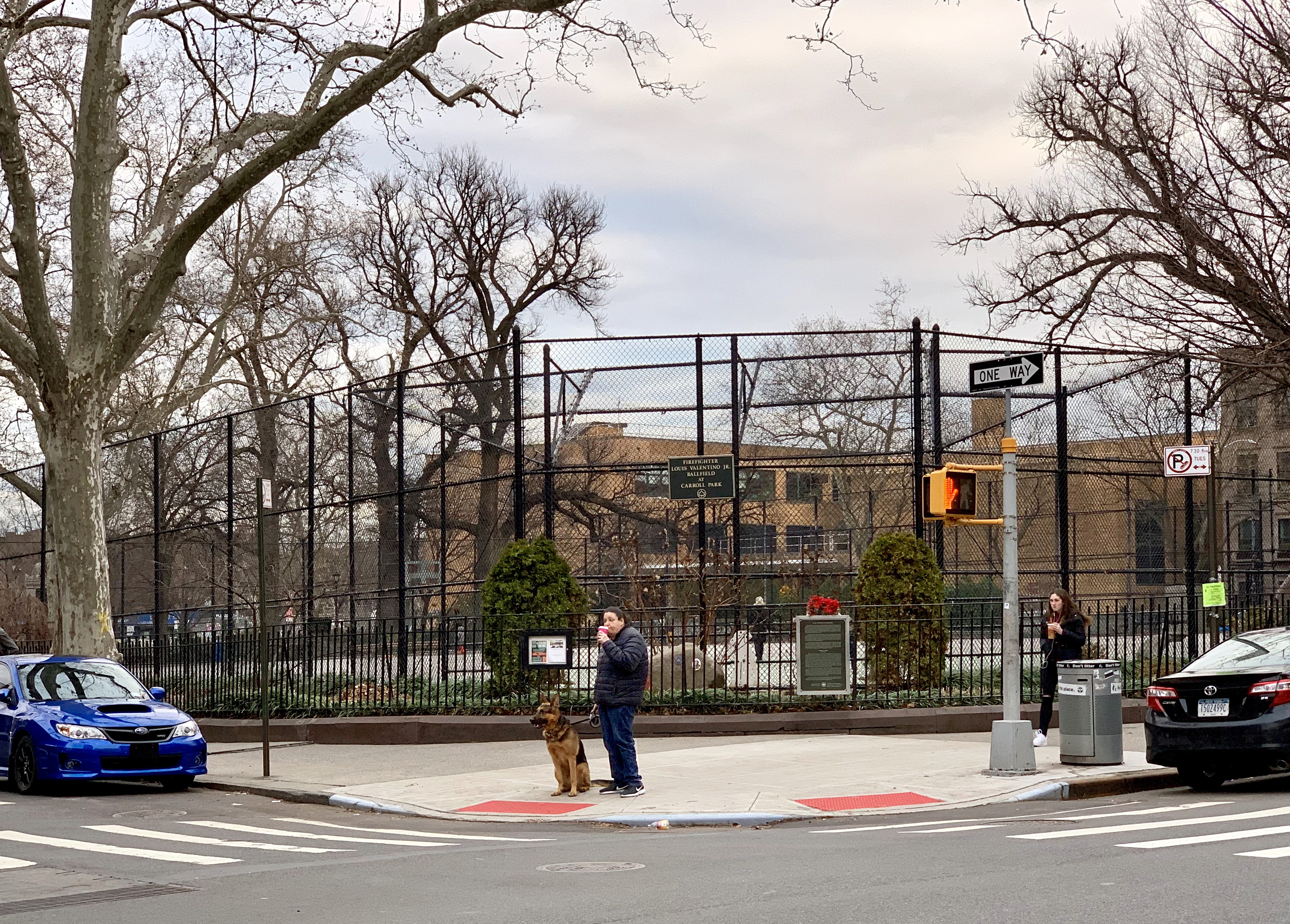 Carroll Park, seen from Court Street. Photo: Mary Frost/Brooklyn Eagle